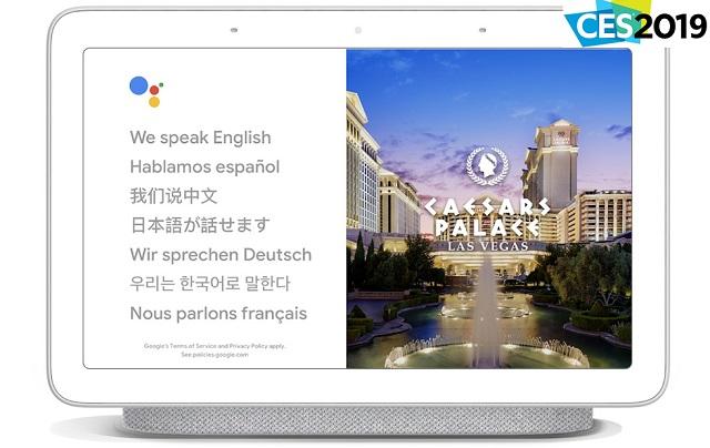 google_interpreter_mode